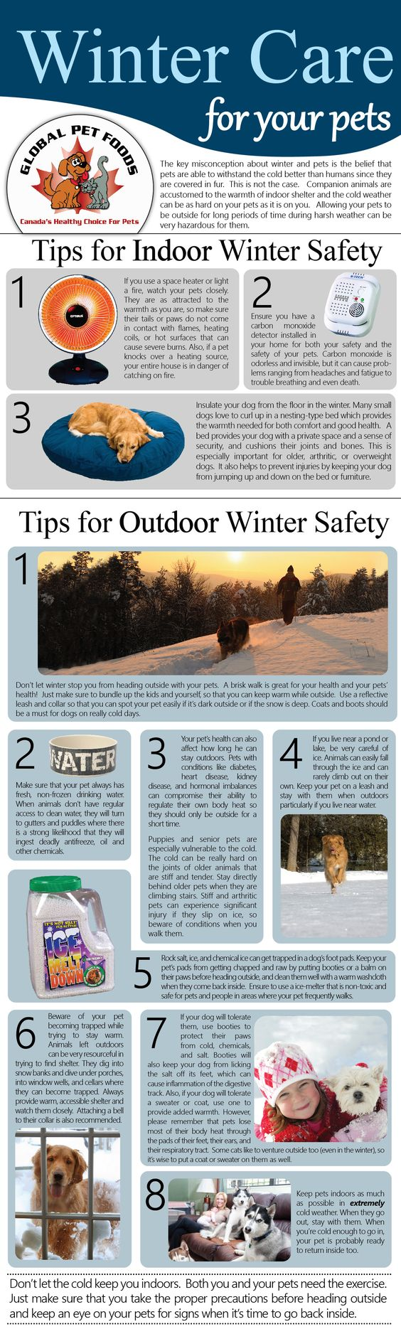 Winter Safety | Veterinary Wellness Partners