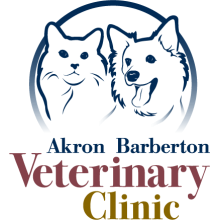 Akron Barberton Veterinary Clinic