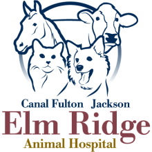Elm Ridge Animal Hospital